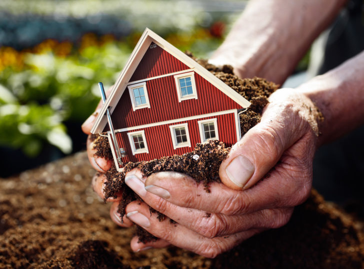 planting the house